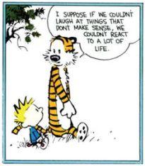Calvin hobbes2
